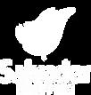 logo Salvador Shopping.png