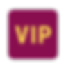 icons8-vip-96.png