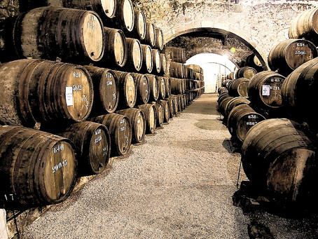 Best Wineries to visit in Porto