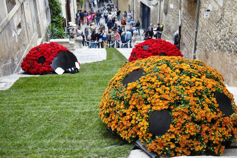 Beautiful flower displays can be seen throughout the city.