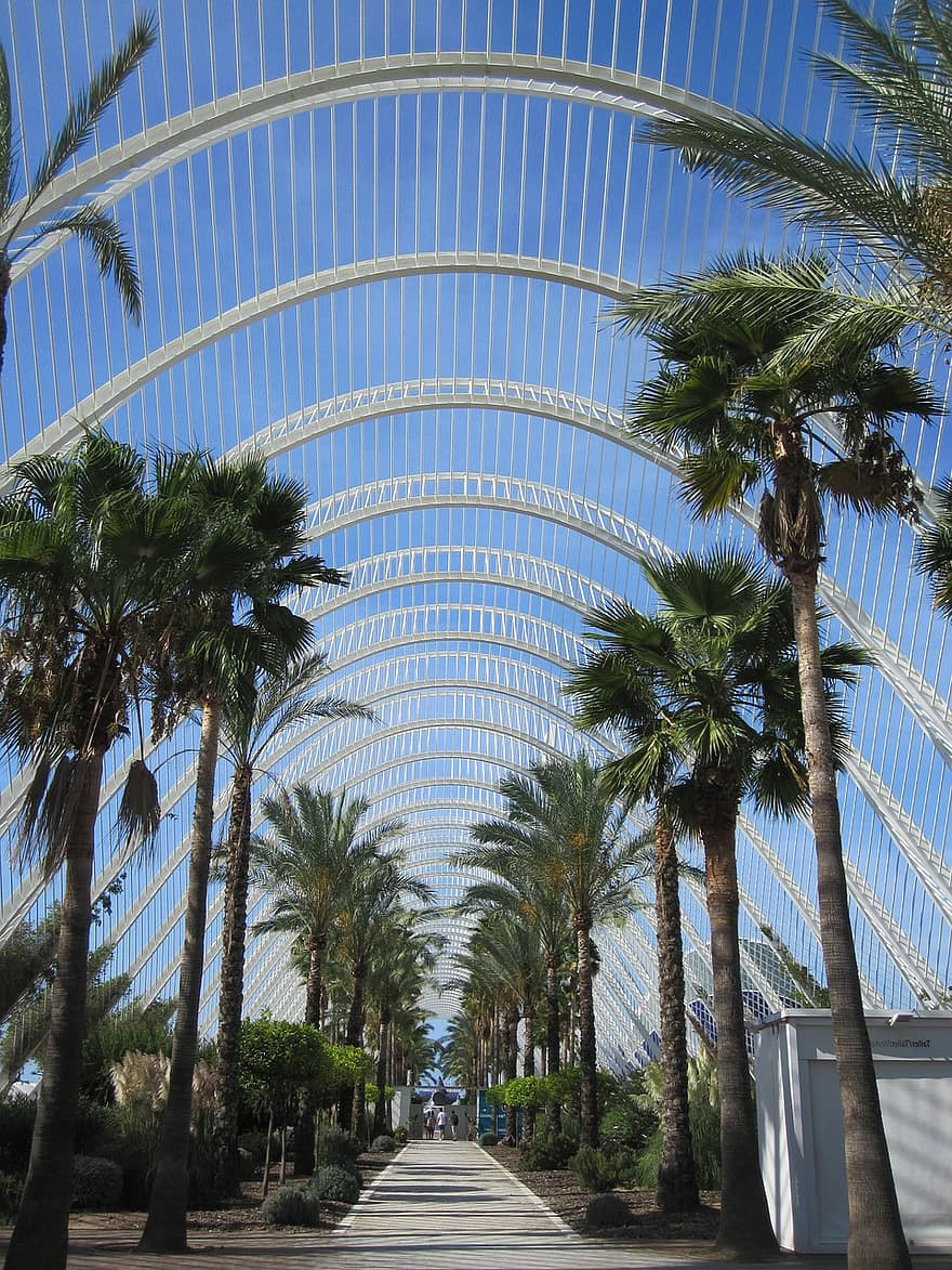 L'Umbracle of the City of Arts and Sciences