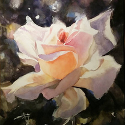 The rose of Wisdom. Watercolor.