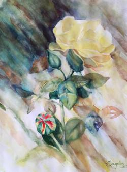 Rain of light. Watercolours.