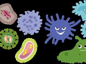 Le microbiote et notre bien-être