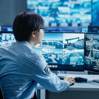 Benefits of Surveillance 5.jpg