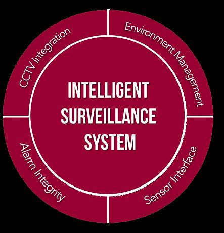 Surveillance Syste,.png