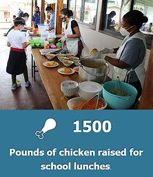 Pounds of Chicken.jpg