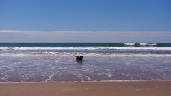 Beach time fun