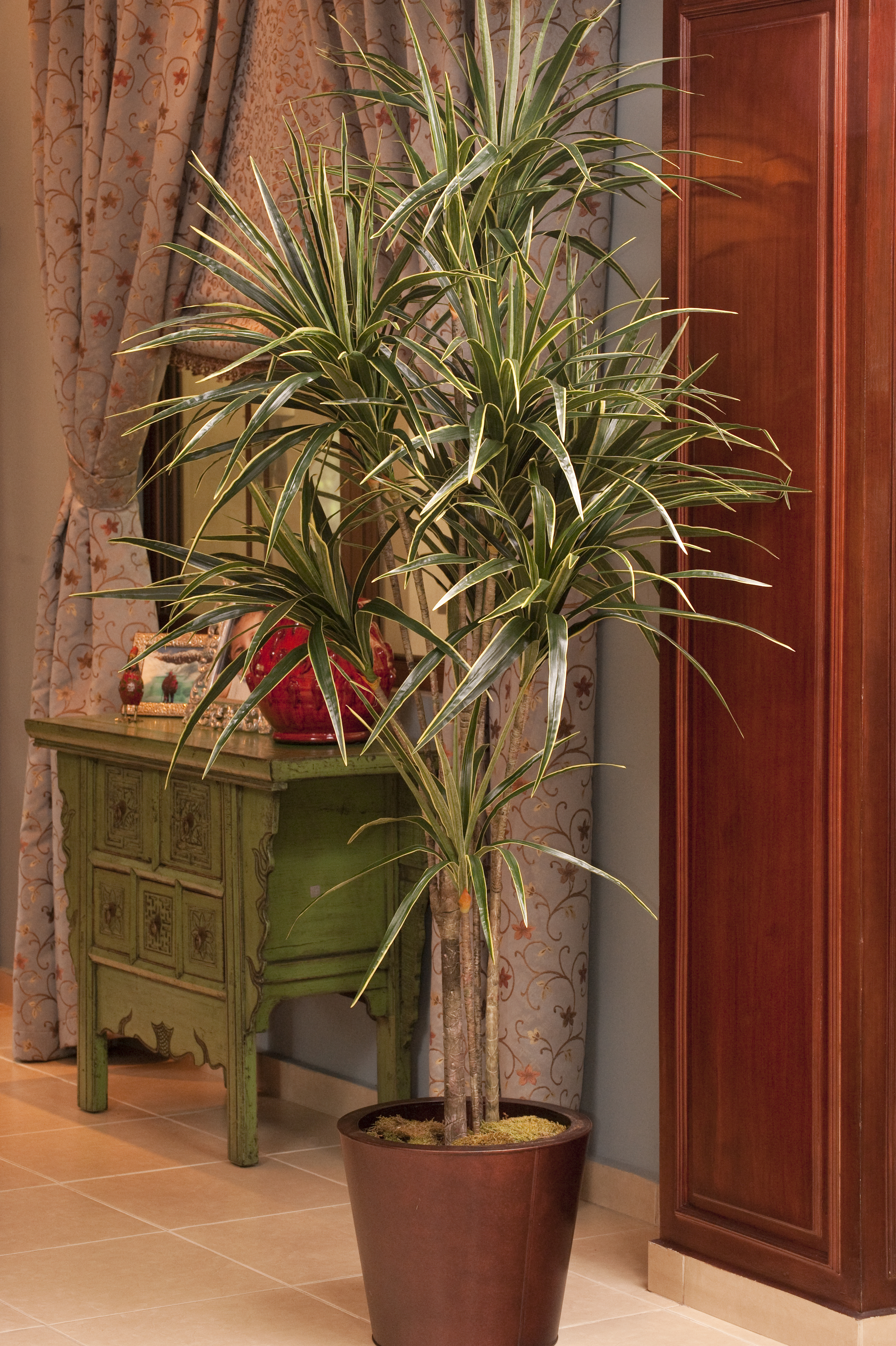 Plantas SOS-137