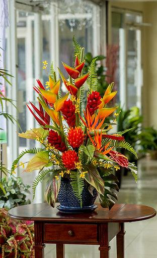 Colorida combinación de flores