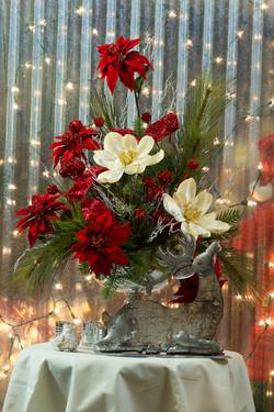 SOS_Navidad_2015115 SMALL02