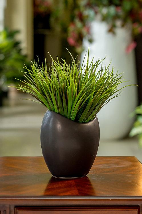 Moderno y versatil Grass
