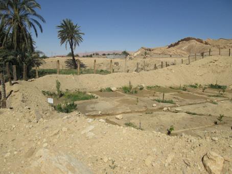 Ricerca Capo Progetto Tunisia - Persone Come Noi sta selezionando un Capo Progetto per la propria
