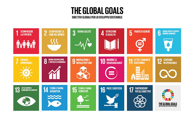 SDGs_icons.jpg