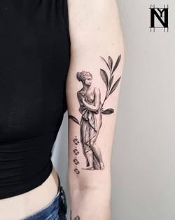by Noam Yona נועם יונה