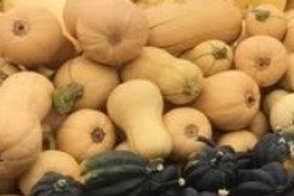 Courge Butternut (env. 1.4kg) bio