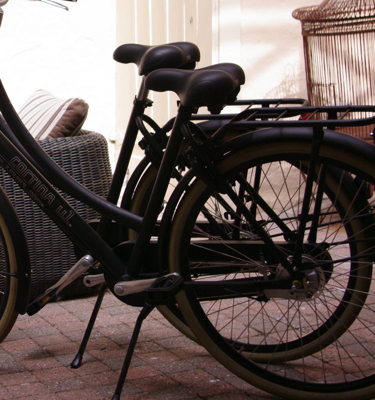 Rental Bikes €10/day