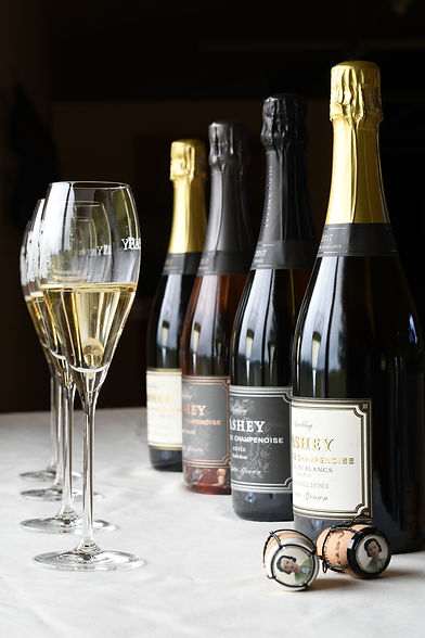 2017 Vintage Pashey Sparkling - Trisaetum Winery