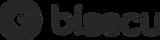 bisecu_logo.png