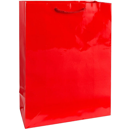Large Glossy Gift Bag