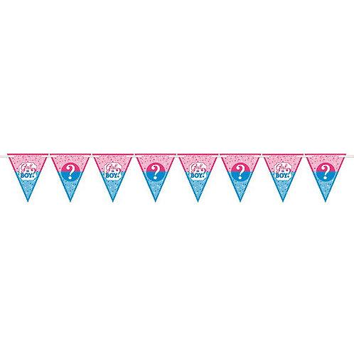 Girl or Boy? Paper Pennant Banner