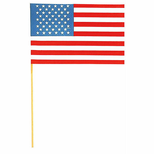 American Flag 6x9