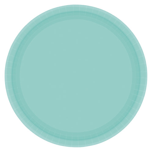 Robins Egg Blue 10in Paper Plates 20ct