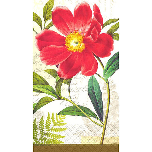 Botanical Peony ECO Guest Towels 16ct