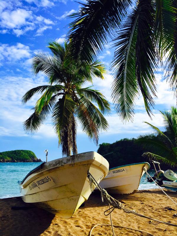 """""""Crocodilo Beach & Fish Boats """""""