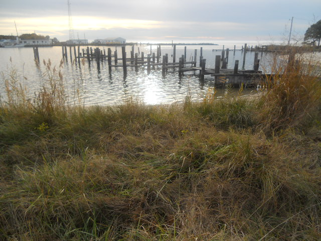 Deal Island-Land