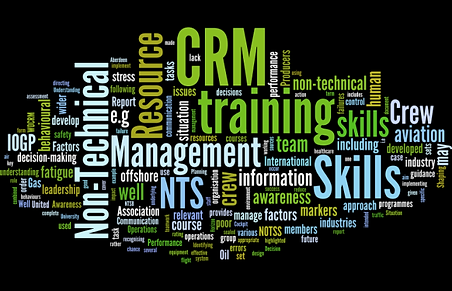 crm-wordle02.png
