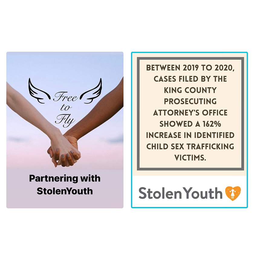 StolenYouth Backpack Drive