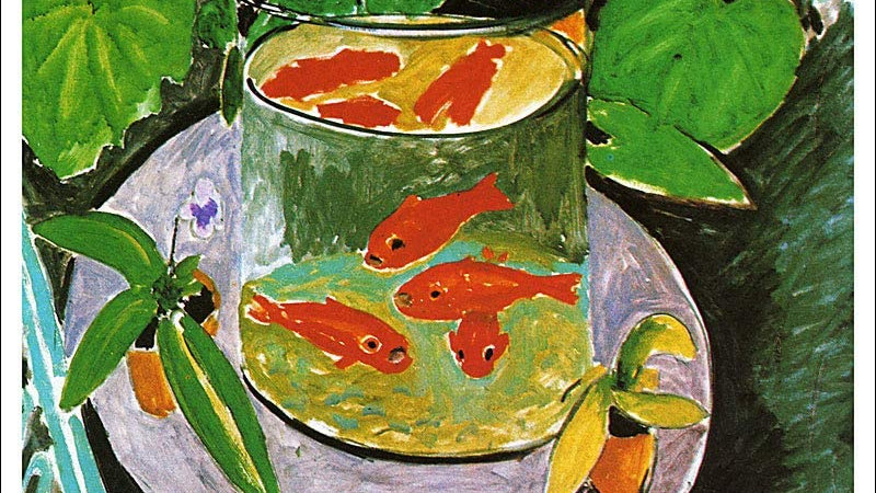 TUESDAYS - Matisse Goldfish Bowl