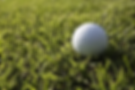 golf-3683328__340.webp
