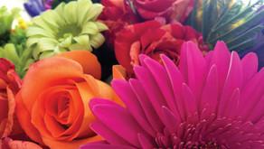 Sanctuary Flowers / Donation Dedications