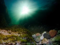 Gotland-©Anders_Nyberg-1535