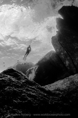 Malta2012-©Anders_Nyberg-4566