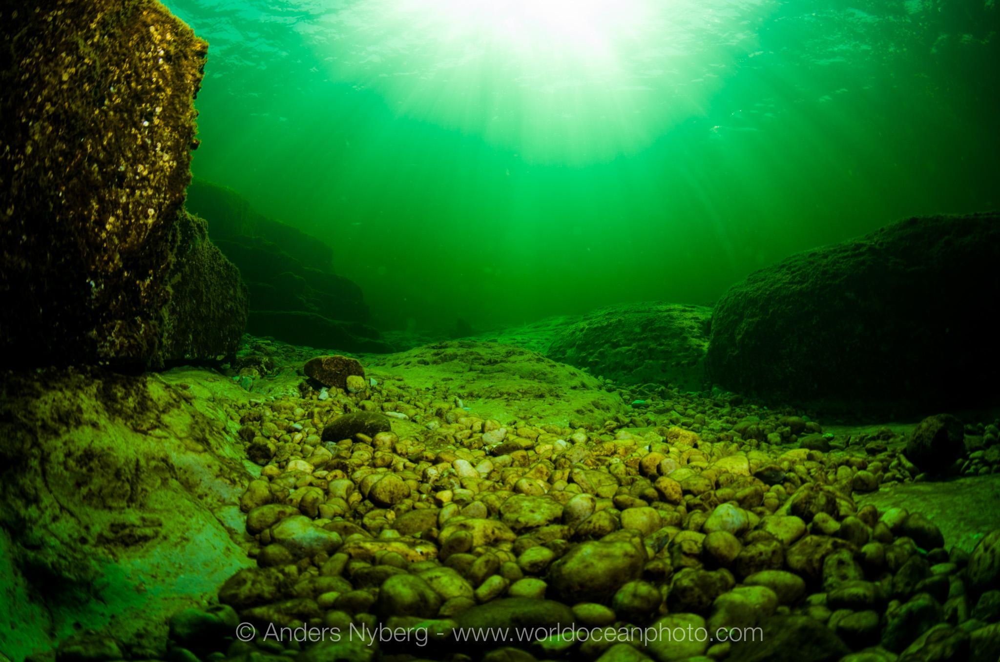 Gotland-Stenkyrkehuk-©Anders_Nyberg-3091