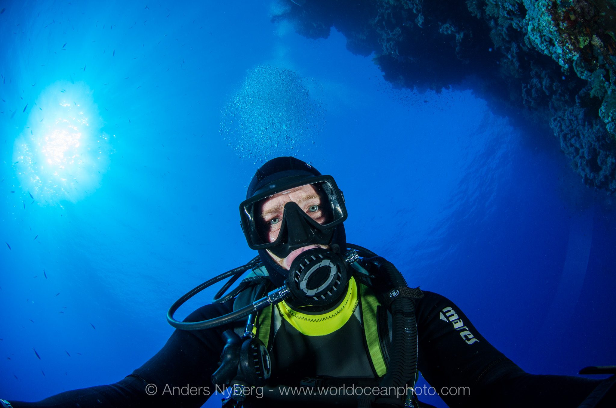 RedSea2013-©Anders_Nyberg-8743