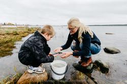 Gotland-©Anders_Nyberg-7241