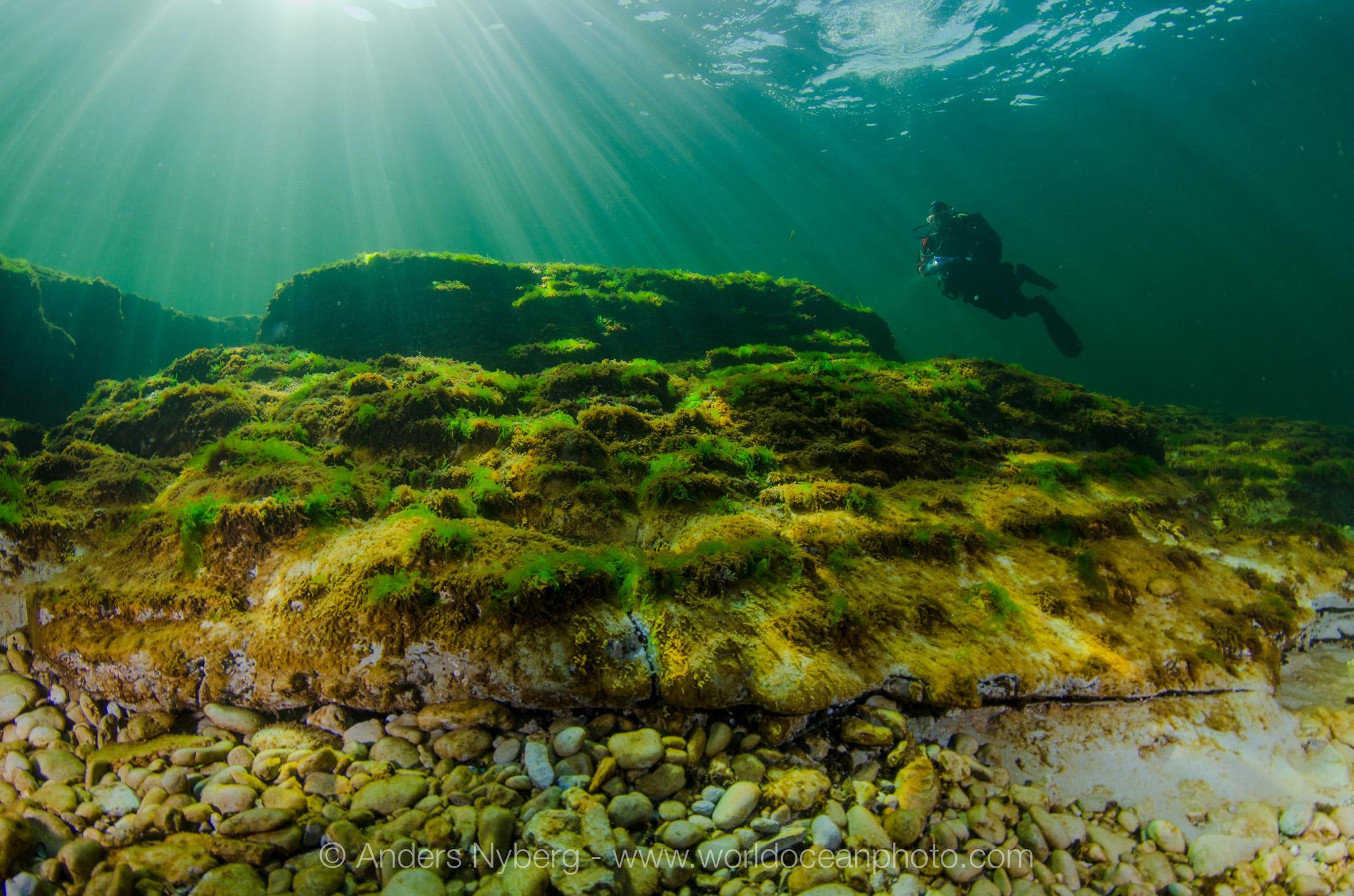 Gotland-Stenkyrkehuk-©Anders_Nyberg-2963