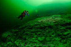 Gotland-Digerhuvud-©Anders_Nyberg-3287