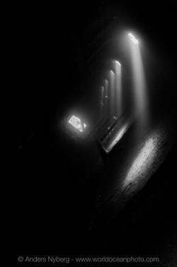 RedSea2013-©Anders_Nyberg-6848