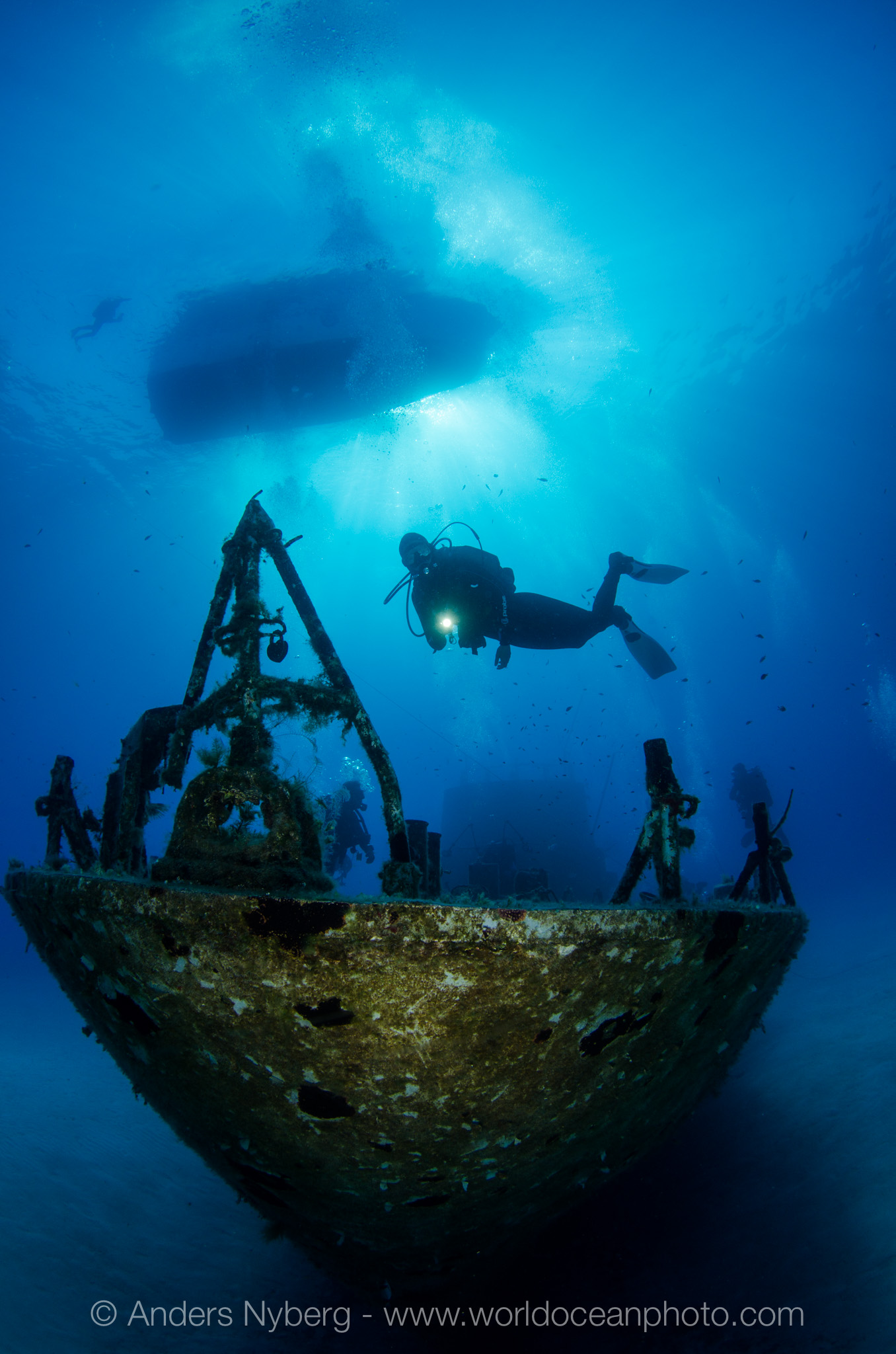 Malta2012-©Anders_Nyberg-4945