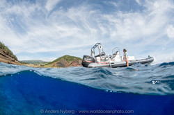 Azores2016-©Anders_Nyberg-47