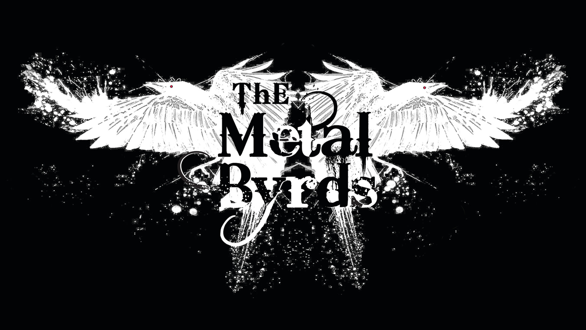The Metal Byrds