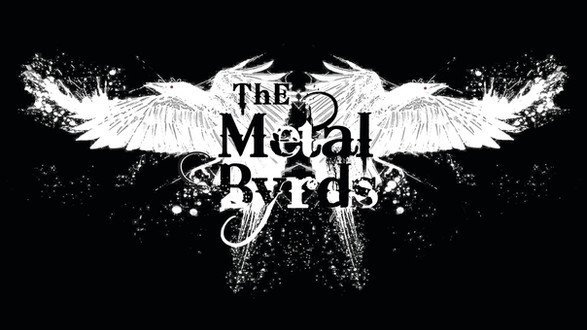 The Metal Byrds