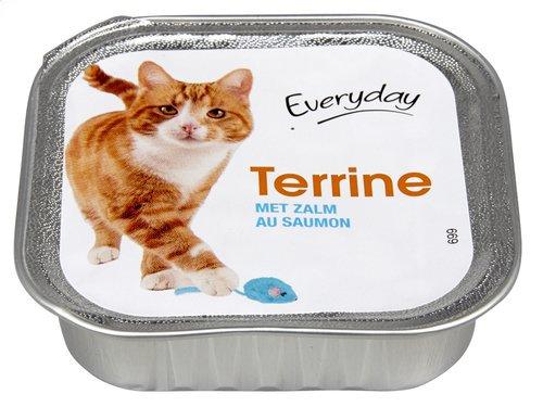 Everyday kat terrine zalm