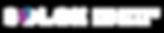 Solex-Logo-white.png