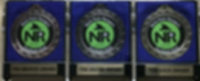 medals bsg.jpg